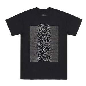 GROUNDED LTR Joy Division